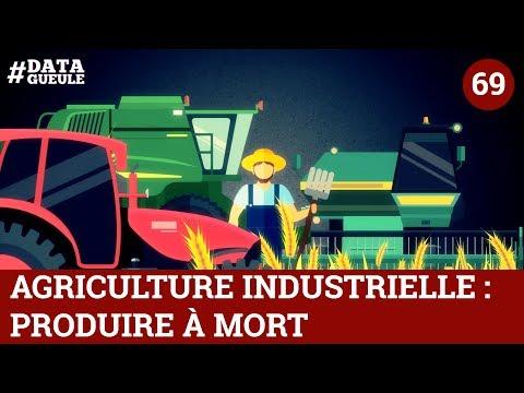 Agriculture industrielle : produire à mort - #DATAGUEULE 69