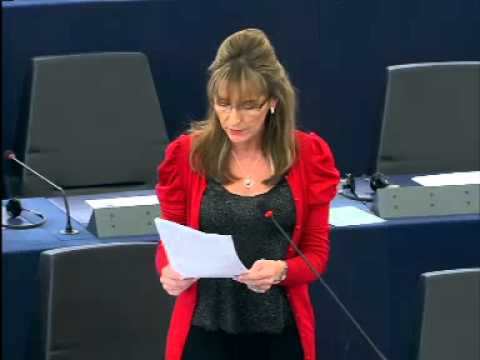 MEP votes against report on Common foreign & security policy