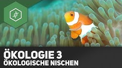 Umweltfaktoren und Ökologische Nischen - Ökologie 3