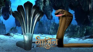 Video Naagin 2- 19th November 2017 | Today Latest News Update | Colors Tv Naagin Season 3 News 2017 download MP3, 3GP, MP4, WEBM, AVI, FLV November 2017