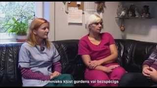 Video, Скорая помощь, домашние животные