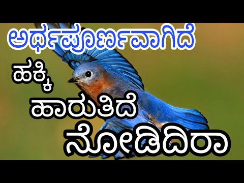shabari 10th kannada<br><iframe title=