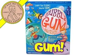 Bubble Gum Factory - Makes 8 Different Recipes, Scientific Explorer