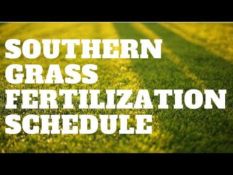 Southern Grass Fertilization Schedule   Sept 1st