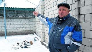Белорусский голубевод держит 48 пород голубей.Гомель.