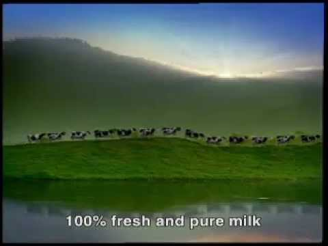 Happy Cows: Vinamilk 100% fresh milk