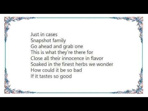 Huffamoose - Snapshot Family Lyrics