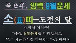 소띠-신축년 양력9월운세-건강운,사업운,금전운,010/4258/8864
