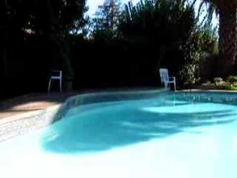 Swimming Pool Zen