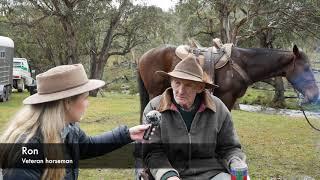 Horsemen saving Aussie wild horses