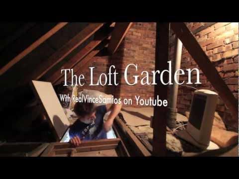 The Loft Garden: Grow Tent & Wiring (S01E01)