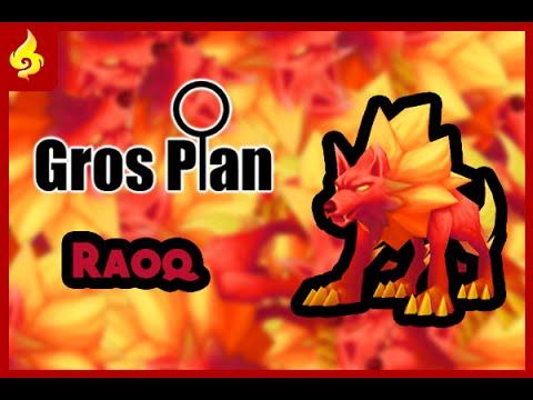 Summoners War - Gros plan - Raoq