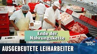 Fleischindustrie: Scheiß auf Hygiene, Hauptsache billig