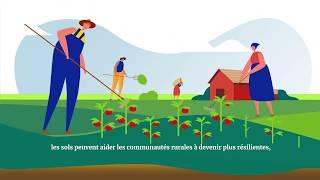 Qu'est-ce que l'Action commune de Koronivia pour l'agriculture?