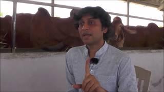 Φ Gopal Sutaria Indias Most famous Gir Gopalak गोपाल सुतरिया भारत के प्रसिद्ध  गाय प्रेक्षक