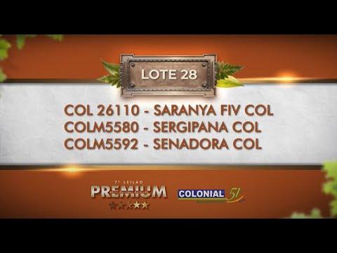 LOTE 28   COL 26110, COLM 5580, 5592