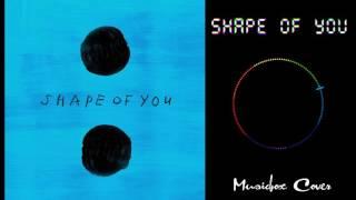 [Music box Cover] Ed Sheeran – Shape of You