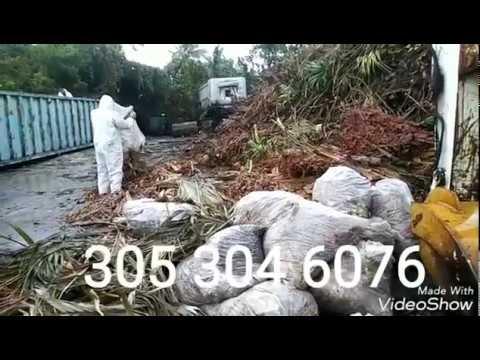 Trash hauling services Florida Keys  305 304 6076