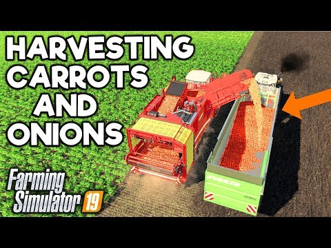 CARROTS & ONIONS - DIFFERENT CROPS! - Farming Simulator 19 (Suedhemmern) thumbnail