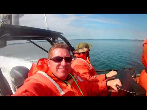 Fundy Tide Runners - Whale Watching. Humpbacks breaching AMAZING!!!