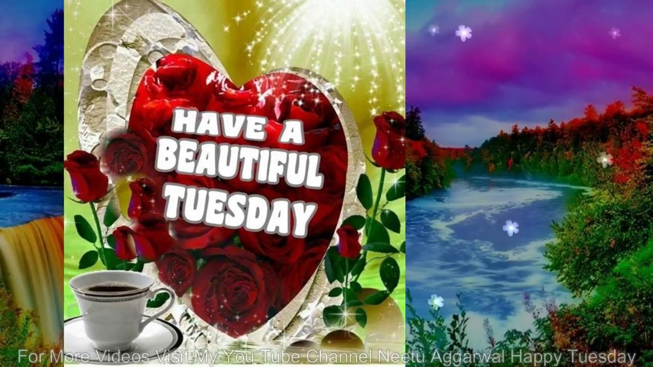 Happy Tuesdaywishesgreetingsquotessmssayinge Cardwallpapers