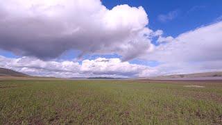 Открыли сезон залив Уза Красноярское водохранилище