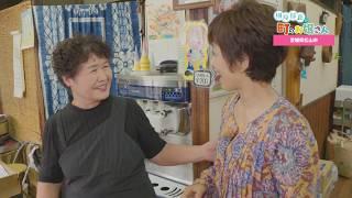 【4K】榊原郁恵の町のお嬢さん 愛媛県新居浜市