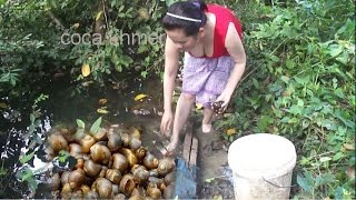 Amazing beautiful girl catch snail field in pond and cooking snail grill - village food factory