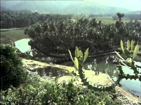 Bhoomi Thayi - Garudarekhe - Kannada Hit Song
