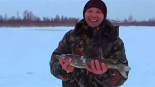 Боровково Озеро Щука на жерлицу зимой
