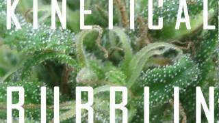 KINETICAL - BUBBLIN (KINETIKUSH EP PREVIEW) (OCT 2012)