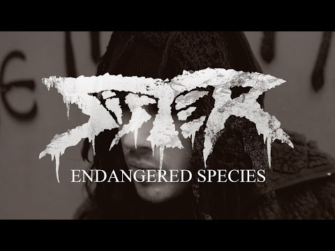 "Sister ""Endangered Species"" (OFFICIAL VIDEO) thumbnail"