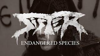 "Sister ""Endangered Species"" (OFFICIAL VIDEO)"