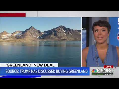 MSNBC guest wonders if 'anybody at the MAGA rally' can 'point out Greenland on a map'