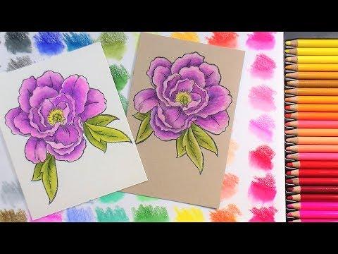 Arteza Colored Pencil Review & Demo: Coloring on Toned vs. White Paper