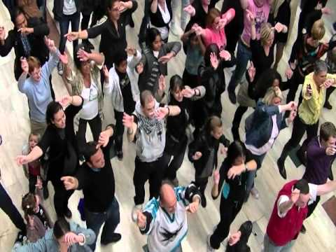 video flashmob carrefour meylan le 20 octobre 2012. Black Bedroom Furniture Sets. Home Design Ideas