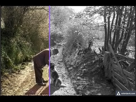 Online convert old black and white to color picture easily