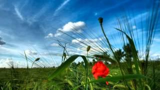 Saachi Kaho Humse Tumko Kitna Pyar Hai [Full Song] (HD) - Saajan Ki Baahon Mein