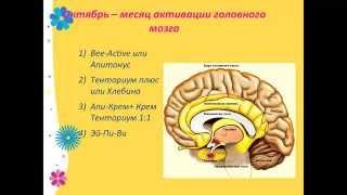 Как работает наш организм и как ему помочь быть здоровым  Ольга Клюева(, 2014-08-09T15:12:55.000Z)