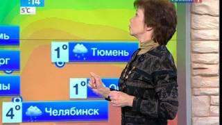 Начало ноября в Московском регионе будет теплым