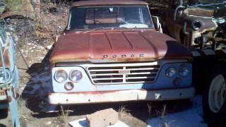 1964 Dodge D100 2wd