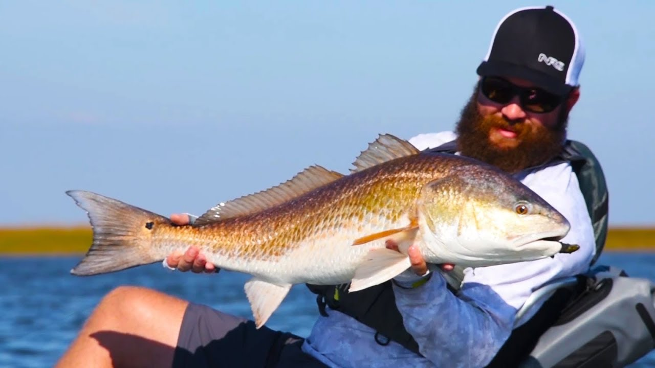 a0fd3c5125 Kayak Fishing  Sight-casting to BIG Redfish