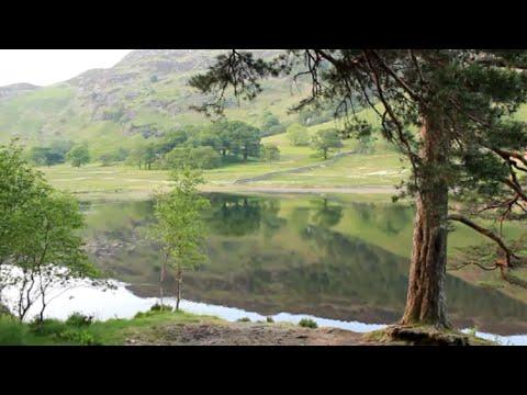 Lake District: Evening Serenity At Blea Tarn