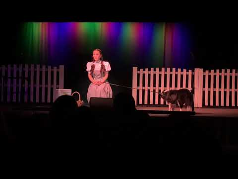 Wizard of oz from YouTube · Duration:  2 hours 12 minutes 48 seconds