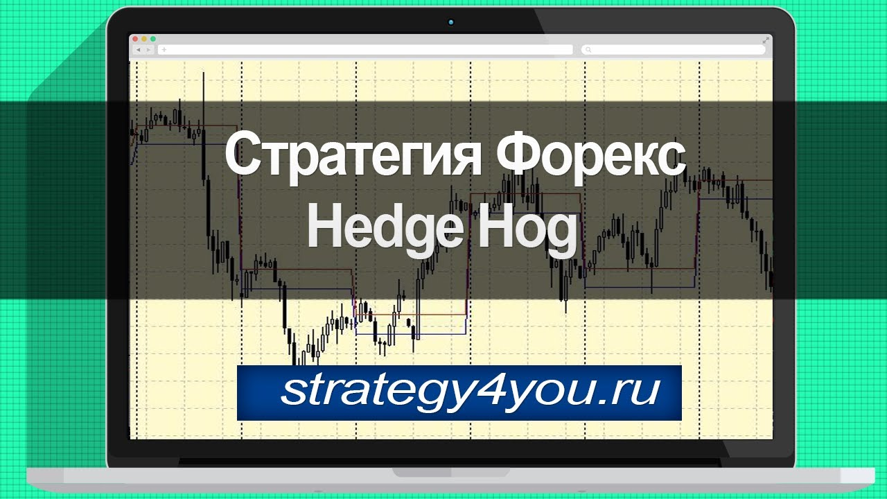 Hedge hog стратегия форекс что такое бычий тренд на форекс