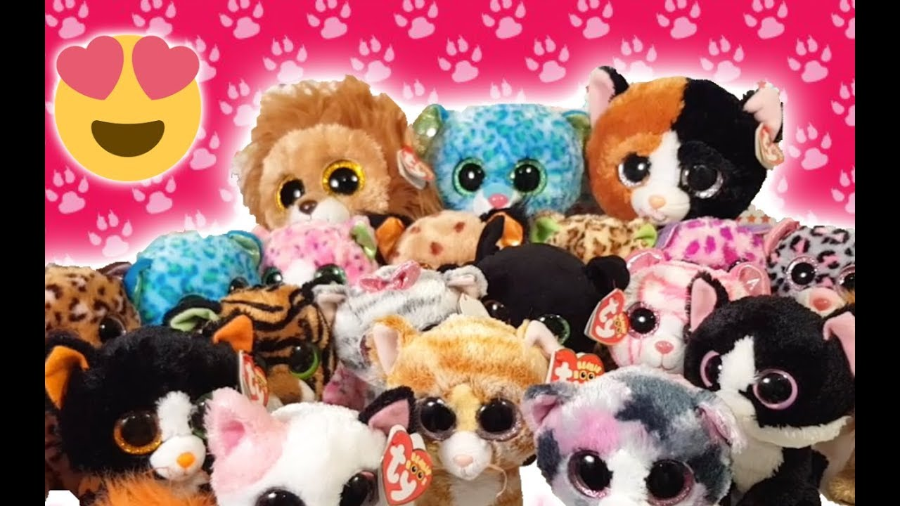 5ac7fe6de3a Our Beanie Boo Cat Collection 2018 - YouTube