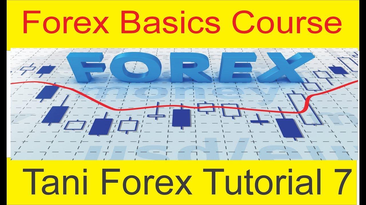 Forex fundamental course