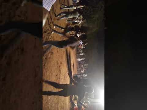 Borwa m dandiya dance