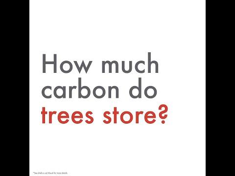 Make the change, drive carbon neutral