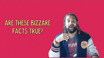 Are These Bizzare facts True? | Ok Tested
